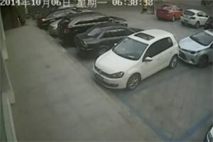 Friday FAIL Bad Parking