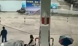 Friday FAIL Purse Thief Crashes
