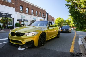 2017 Gold Coast Concours Bimmerstock (157)