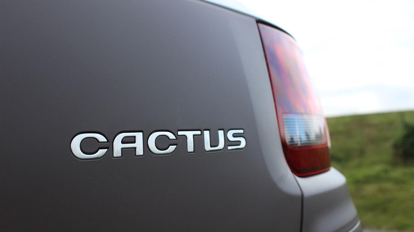 08_C4_Cactus_TMRT