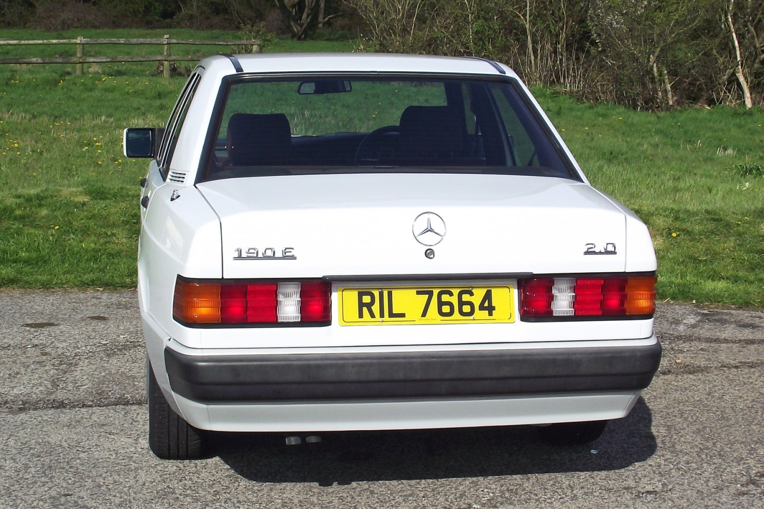 Mercedes-Benz 190E: what should I look out for?