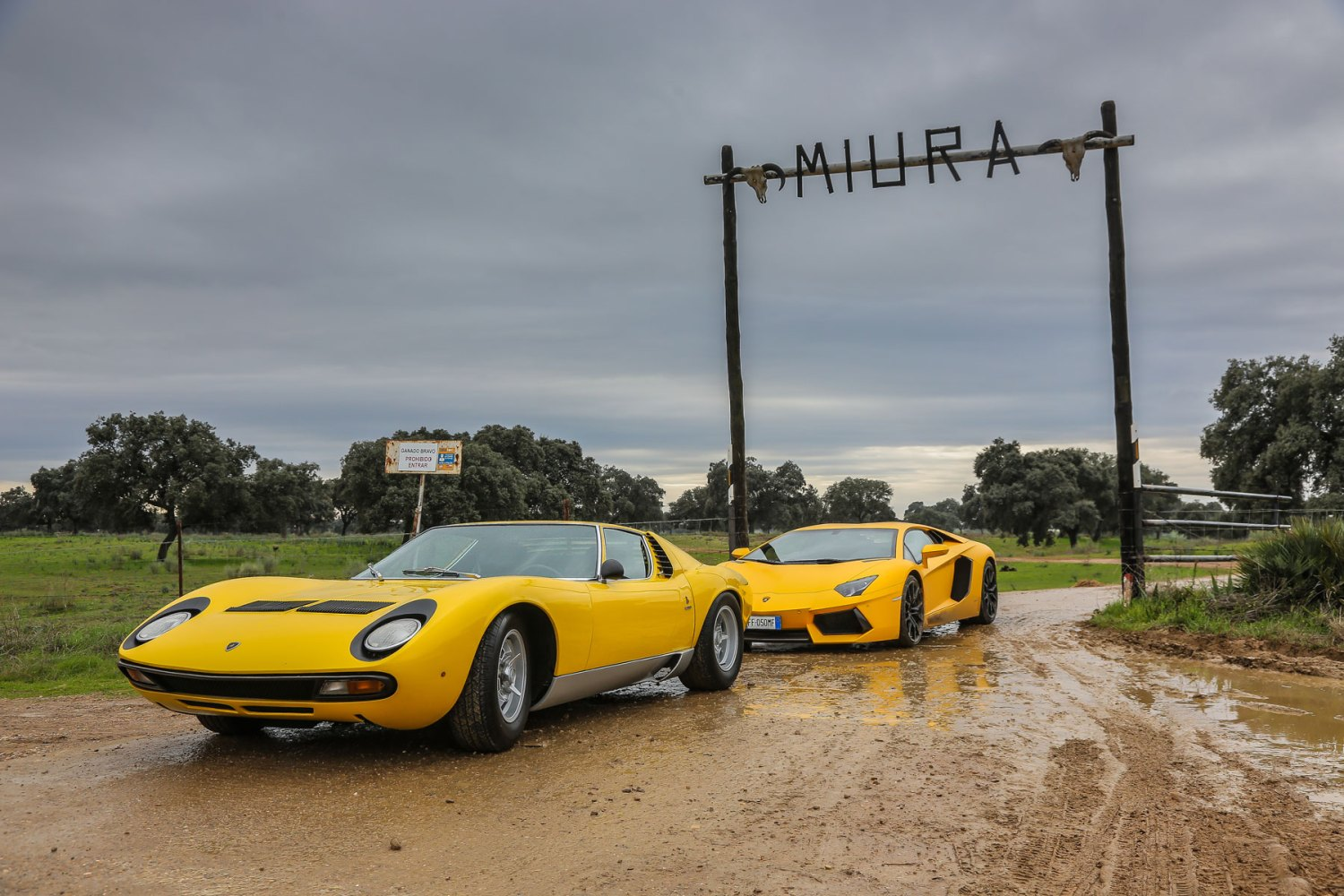Lamborghini Miura Concludes Its Grand Tour Motoring Research