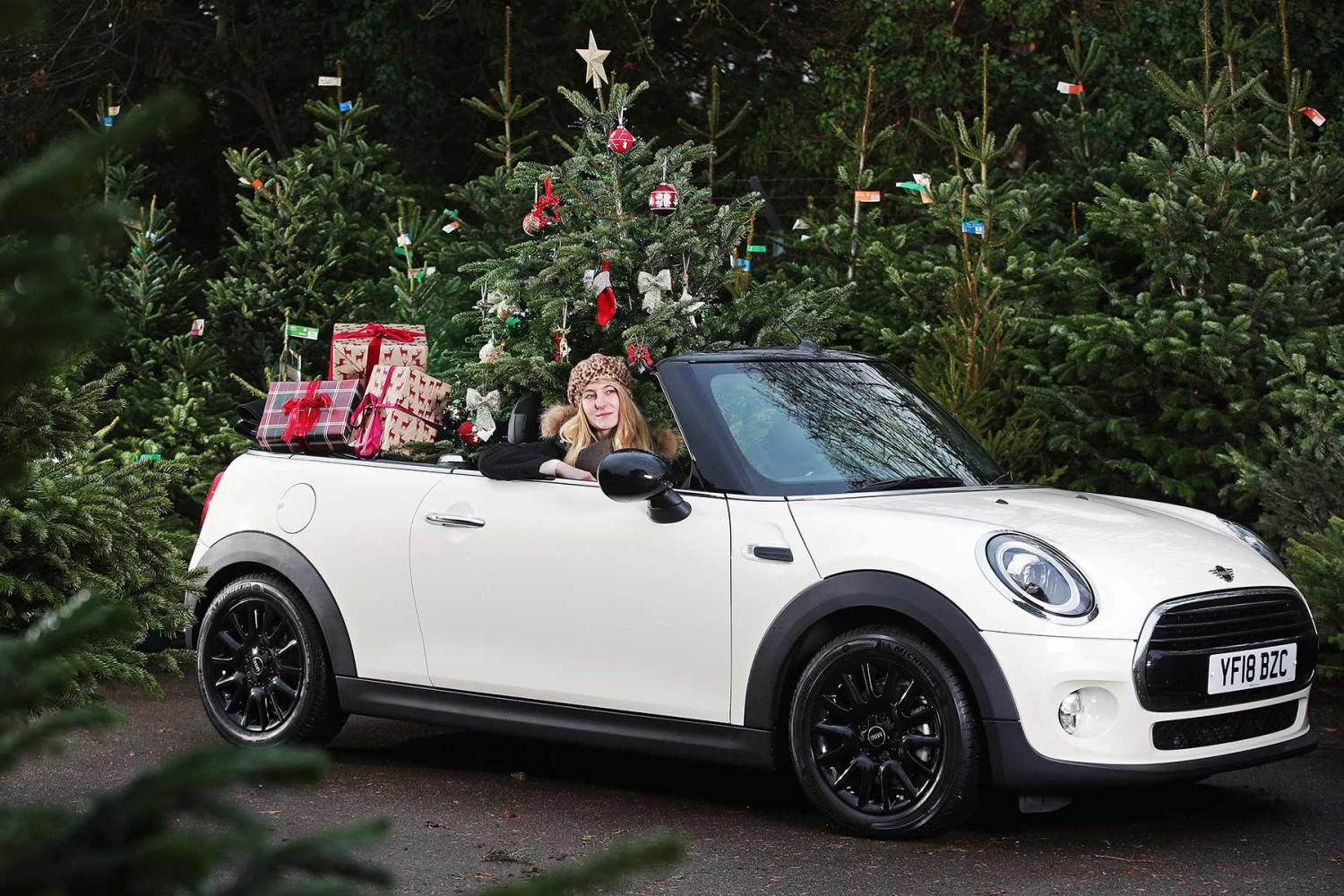 Car Christmas.How To Transport Your Christmas Tree By Car This Weekend