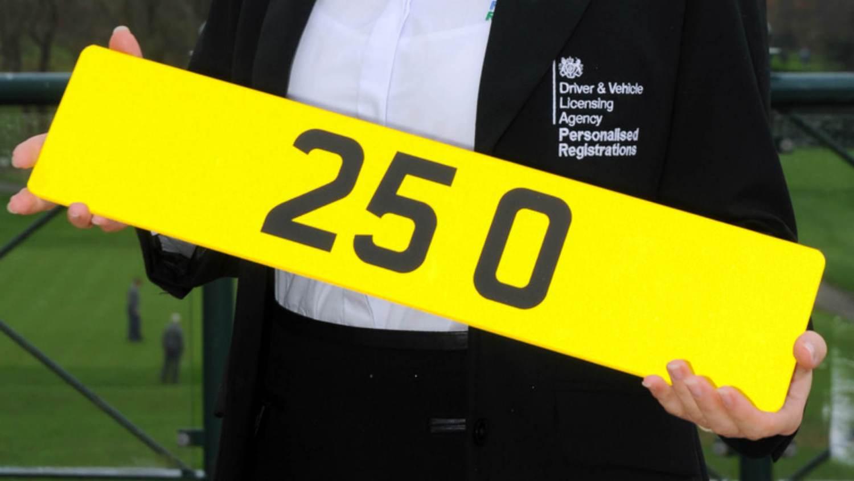 25 O plate