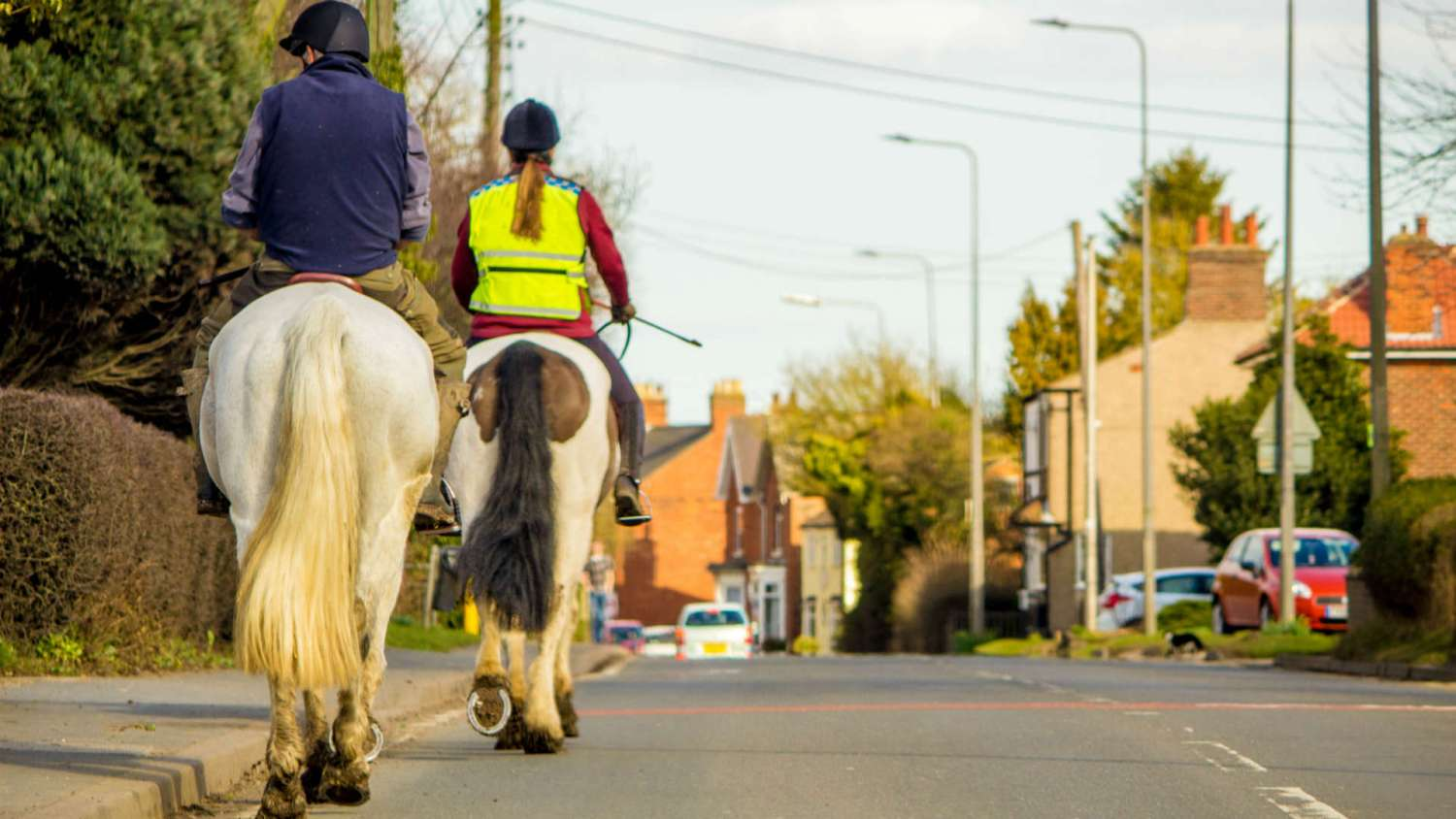 How to pass horses safely on the road