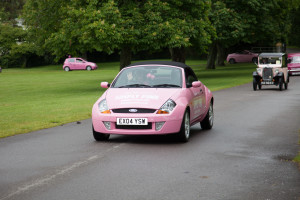 2015 Simply Pink Cavalcade Ford Streetka