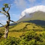 montanha_do_pico_aspectos_5_ilha_do_pico_acores_portugal