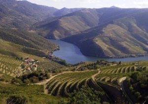douro-valley-panorama-trekking