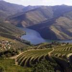 douro-valley-panorama-trekking