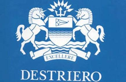 1 Destriero logo