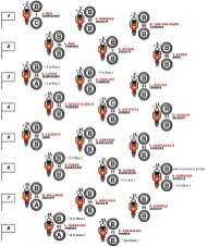 worldsbk-race-2-tyre-selection-on-starting-grid(1)