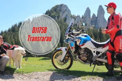 Transrarău (DJ175B)
