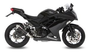 Ninja 300 med GP