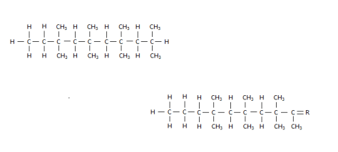 Two polymer molecules; each half the size of the original