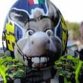Donkey Rossi