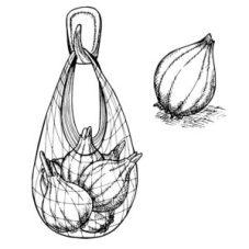 Fig. A. Filet à provisions pouvant aussi servir de filet à ballon.
