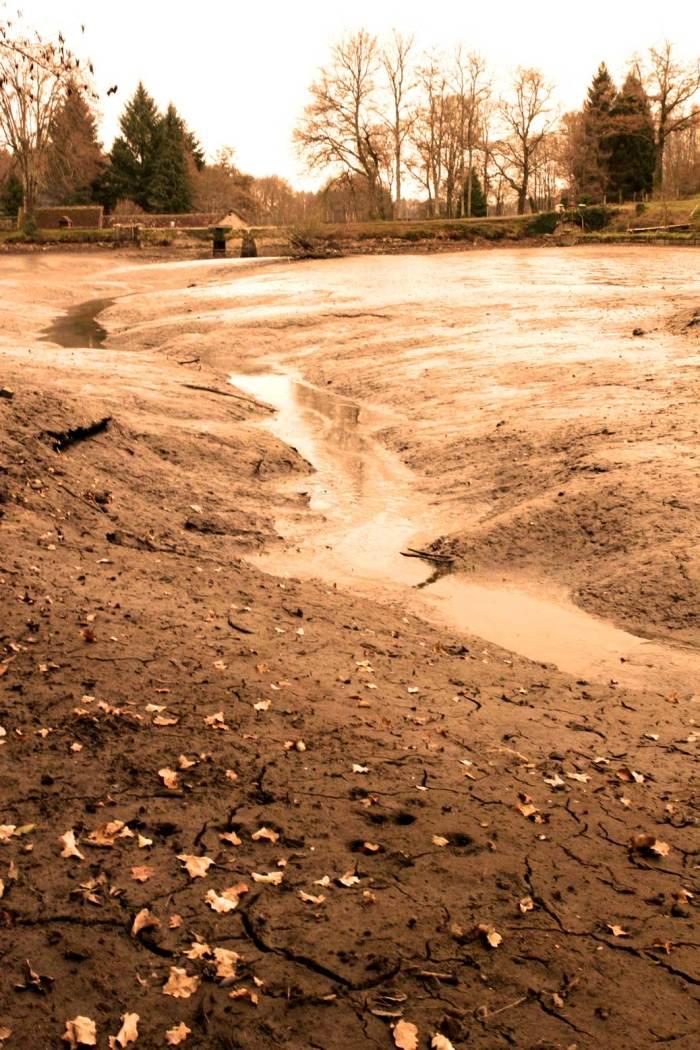 L'étang du Moulin Authier vidangé