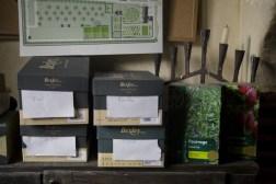 Boîtes des graines des semis en pleine terre
