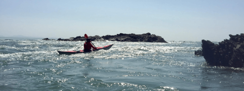 Sea Kayak Coach Training Mountain Water Expeditions, Coach Award Training Courses