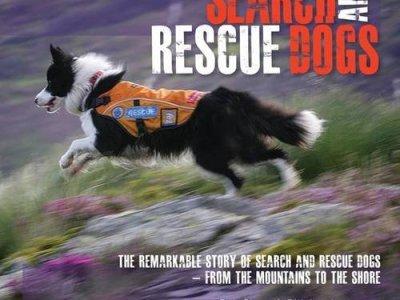 search-rescue-dogs