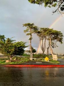 West Cliff Rainbow by Gretchen McPherson