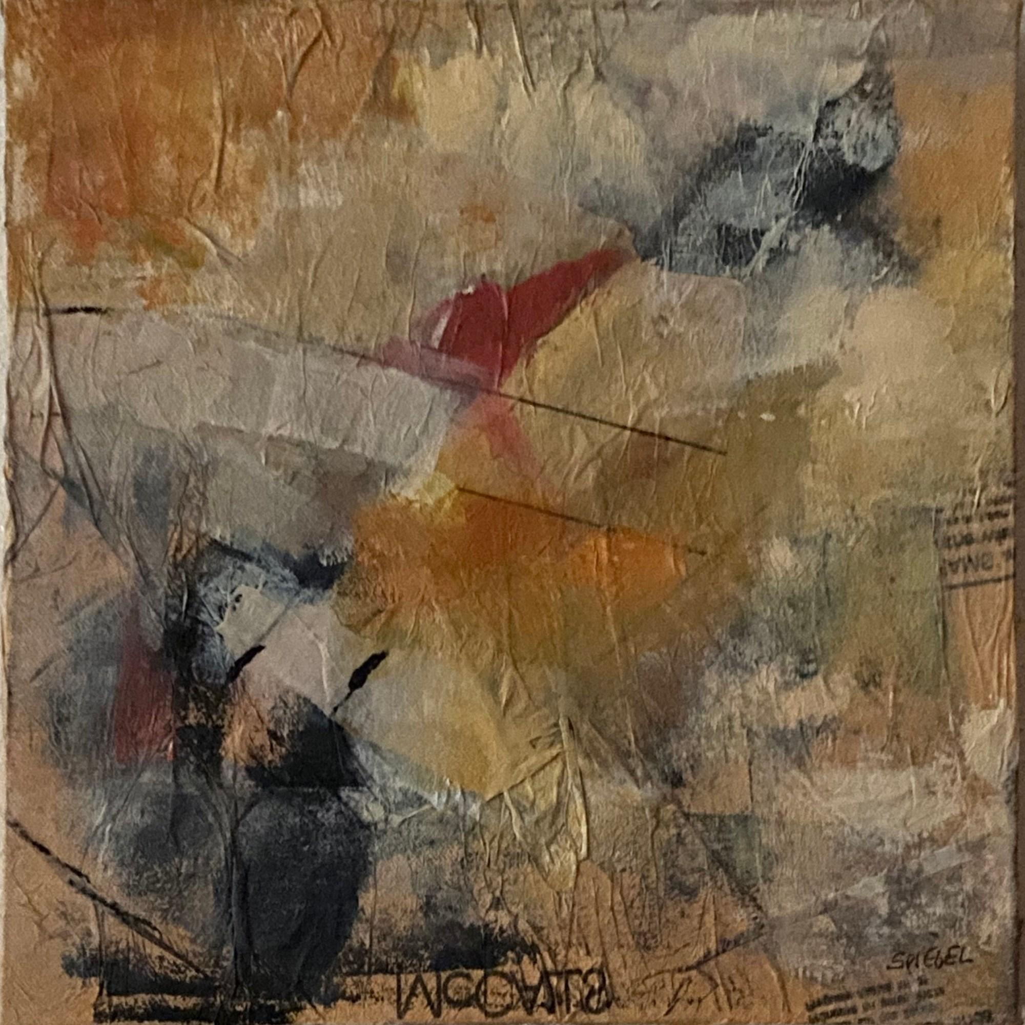 Patterns # 2 - Sanda Spiegel
