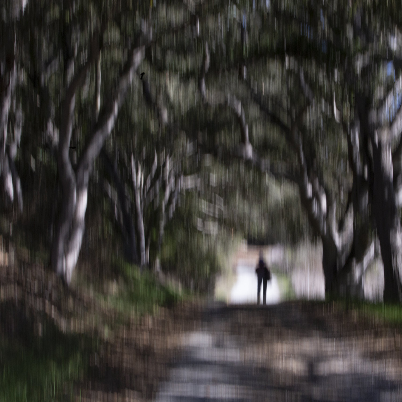 Elkhorn Walk - Karen Asherah