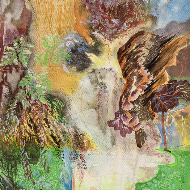 Forest Imprint - Aliza Heckert