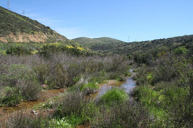 Bottom of Windmill Canyon