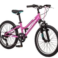 "Schwinn High Timber Mountain 20"" Wheel Bicycle, Pink, 10.5""/One Size"