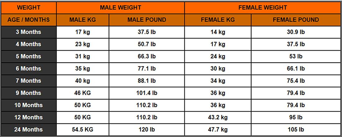 Puppy Weight Chart Calculator
