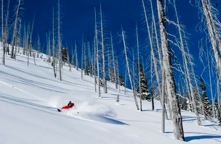 Skier: Andrew McNab Location: Monashee Mountains, BC