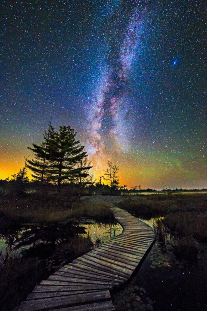 midnight-walkway-3
