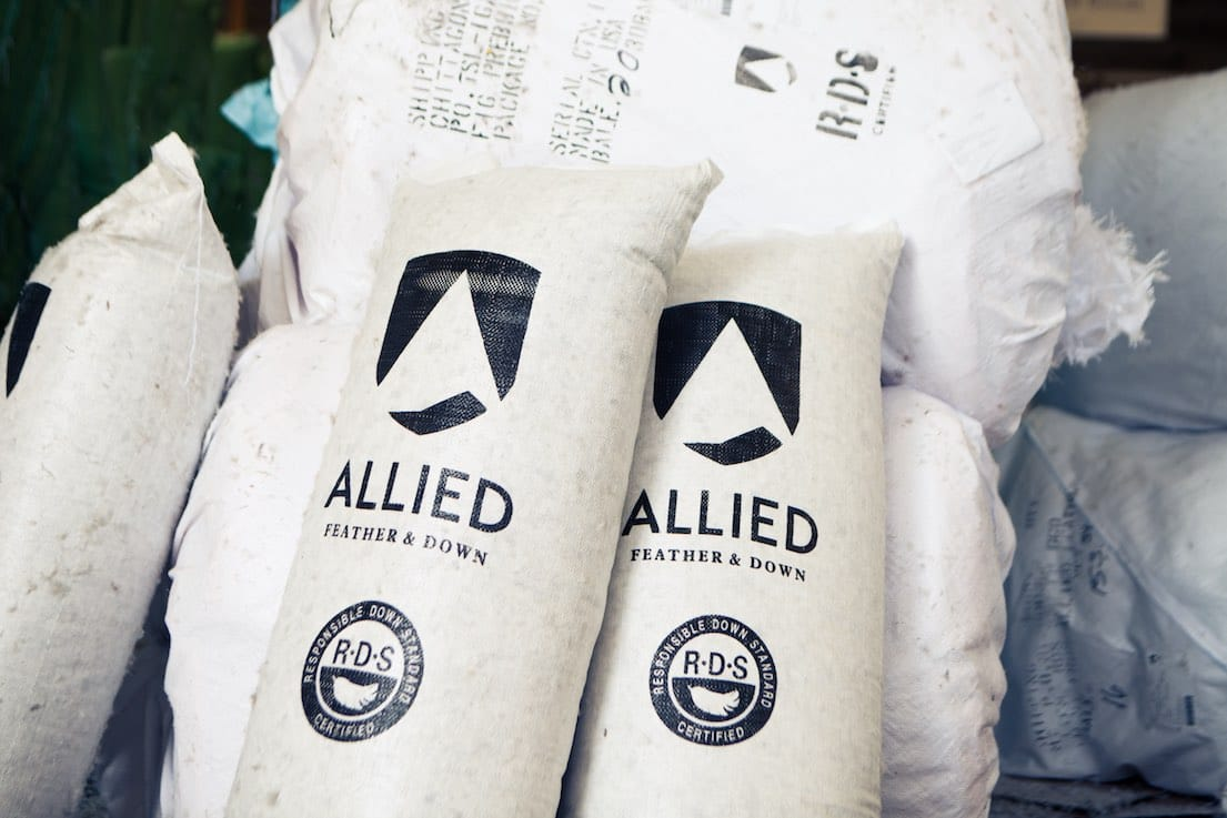 ba8b88771 The Most Sustainable Down You Can Find? Check Out Allied Feather First.