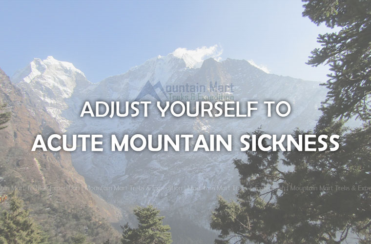 Adjust to Acute Mountain Sickness