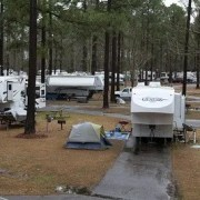 RVs at a campground