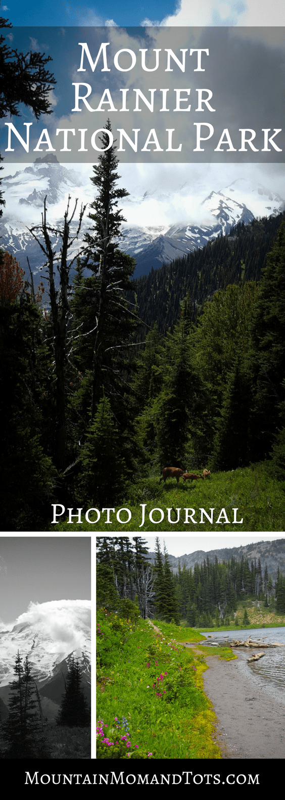 Mount Rainier Photo Journal Pin 1