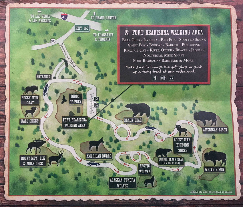 bearizona wildlife park map
