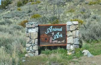 animal ark entrance