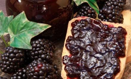 Picking Mountain Blackberries