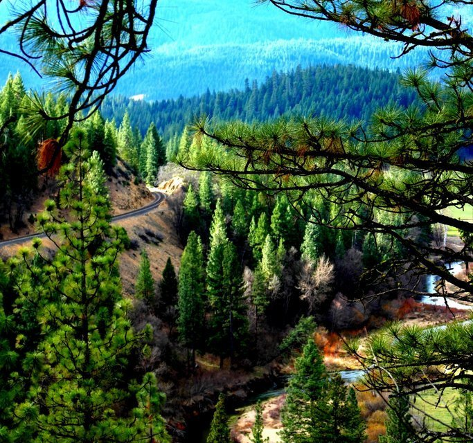 Hitting The Hiking Trail In Plumas County