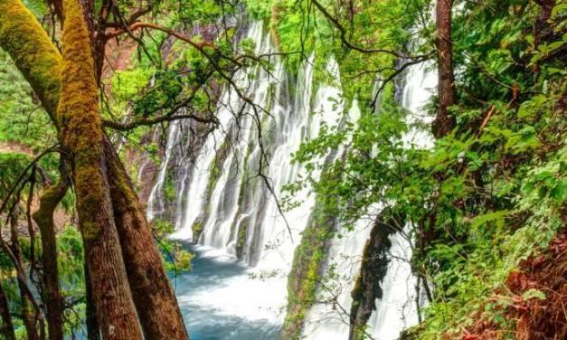A Trip To Burney Falls