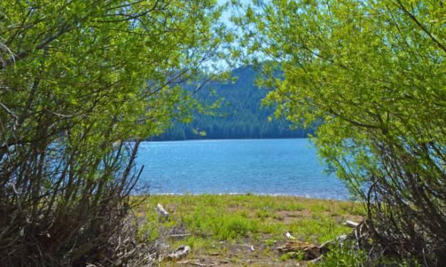 Exploring Butt Valley Reservoir