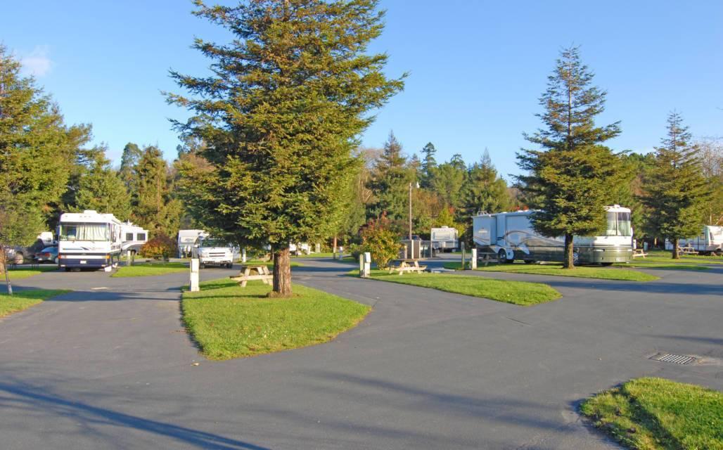 Riverwalk RV Park & Campground – Next To The River – Fortuna, CA