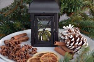 cinnamon-pine-cone-lantern