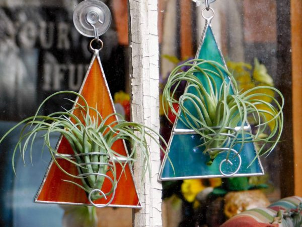 air plants in stained glass triangle holders