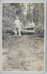 Cutting a tree from the road