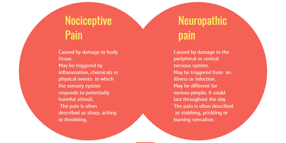 Nociceptive pain vs Neuropathic pain