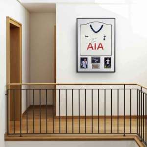 authentically signed dele alli spurs background