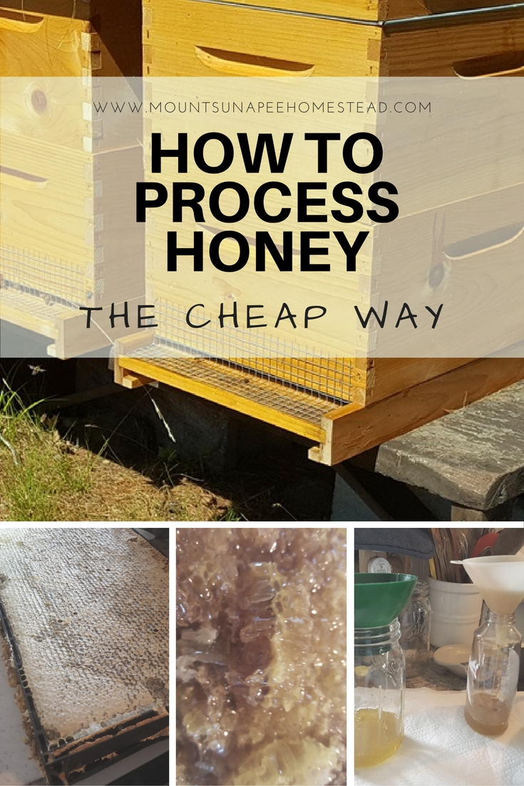 How to process honey